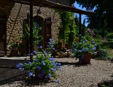 agriturismo in Tuscany Italy