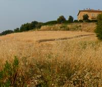 Tuscany: bed and breakfast in farmhouse Italy