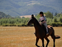 horse trekking and riding holiday Tuscany Italy
